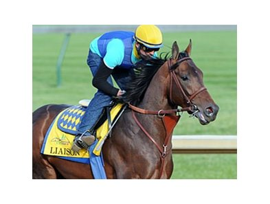 "Liaison<br><a target=""blank"" href=""http://photos.bloodhorse.com/TripleCrown/2012-Triple-Crown/Works/22611108_LR3wcn#!i=1810654359&k=dJMBpHT"">Order This Photo</a>"