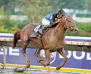 Curlin to race in 2008.