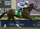 Exhi thoroughly dominated his three rivals in the  Victoria Park Stakes at Woodbine.