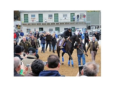 "Zenyatta draws a crowd as she heads to the track.<br><a target=""blank"" href=""http://www.bloodhorse.com/horse-racing/photo-store?ref=http%3A%2F%2Fpictopia.com%2Fperl%2Fgal%3Fprovider_id%3D368%26ptp_photo_id%3D9262770%26ref%3Dstory"">Order This Photo</a>"