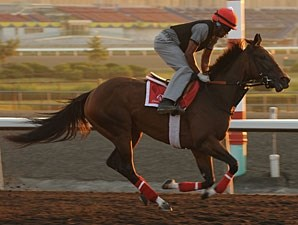 Dixie Strike - Woodbine August 3, 2012.