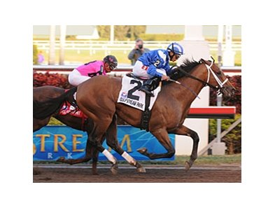 "Albertus Maximus<br><a target=""blank"" href=""http://www.bloodhorse.com/horse-racing/photo-store?ref=http%3A%2F%2Fpictopia.com%2Fperl%2Fgal%3Fprovider_id%3D368%26ptp_photo_id%3D7610202%26ref%3Dstory"">Order This Photo</a>"