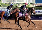 "Wind Fire,a 3-year-old filly from England, will also try to defeat the best U.S. speedsters at six furlongs on the dirt.<br><a target=""blank"" href=""http://photos.bloodhorse.com/BreedersCup/2014-Breeders-Cup/Works/i-646VpK3"">Order This Photo</a>"