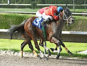 Cash Rules wins the 2012 Spend a Buck.