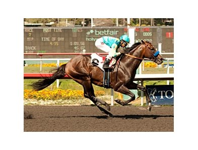 Paynter returns to stakes company in the San Diego.