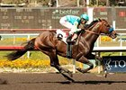 Paynter Ready for Next Step in San Diego 'Cap