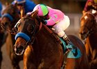 Liaison won the CashCall Futurity in December at Hollywood Park.