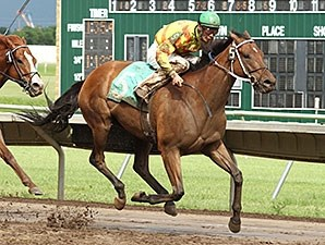 Stachys wins the 2012 Brooks Fields Stakes.