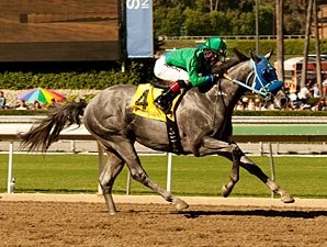 San Felipe Attracts Balanced Field of 10