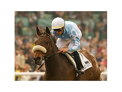 "Life Is Sweet will try to make history in the Hollywood Gold Cup.<br><a target=""blank"" href=""http://www.bloodhorse.com/horse-racing/photo-store?ref=http%3A%2F%2Fpictopia.com%2Fperl%2Fgal%3Fprovider_id%3D368%26ptp_photo_id%3D7902028%26ref%3Dstory"">Order This Photo</a>"