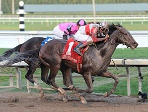 Orb Overcomes Violence in Fountain of Youth