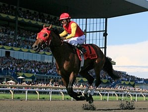 Eye of the Leopard wins the 2009 Queen's Plate.