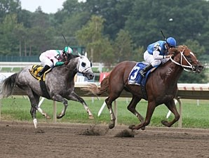 Duke of Mischief wins the 2010 Iselin.