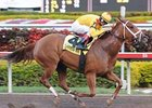 "First Lady Stakes winner Game Face takes on Any Limit again in the Hurricane Bertie Stakes.<br><a target=""blank"" href=""http://www.bloodhorse.com/horse-racing/photo-store?ref=http%3A%2F%2Fpictopia.com%2Fperl%2Fgal%3Fprovider_id%3D368%26ptp_photo_id%3D7466401%26ref%3Dstory"">Order This Photo</a>"