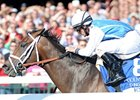 "Exhi won the 2010 Coolmore Lexington at Keeneland.<br><a target=""blank"" href=""http://www.bloodhorse.com/horse-racing/photo-store?ref=http%3A%2F%2Fpictopia.com%2Fperl%2Fgal%3Fprovider_id%3D368%26ptp_photo_id%3D8896198%26ref%3Dstory"">Order This Photo</a>"