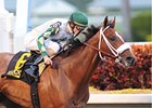 Mucho Macho Man Breezes for GP Handicap
