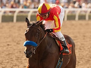 Executiveprivilege wins the 2012 Chandelier.