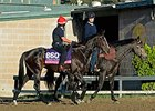 Prize Exhibit