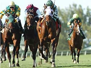 Keeneland Opens With Transylvania