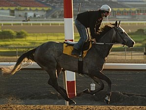 Charismatically - Woodbine June 1, 2011