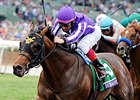 "2014 Breeders' Cup Juvenile Turf winner Hootenanny<br><a target=""blank"" href=""http://photos.bloodhorse.com/BreedersCup/2014-Breeders-Cup/Juvenile-Turf/i-ZcVdH3Z"">Order This Photo</a>"
