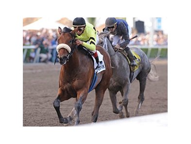 "Quality Road is the one to beat in the Met Mile.<br><a target=""blank"" href=""http://www.bloodhorse.com/horse-racing/photo-store?ref=http%3A%2F%2Fpictopia.com%2Fperl%2Fgal%3Fprovider_id%3D368%26ptp_photo_id%3D7958411%26ref%3Dstory"">Order This Photo</a>"