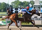 "Belmont Stakes winner Summer Bird<br><a target=""blank"" href=""http://www.bloodhorse.com/horse-racing/photo-store?ref=http%3A%2F%2Fpictopia.com%2Fperl%2Fgal%3Fprovider_id%3D368%26ptp_photo_id%3D8205347%26ref%3Dstory"">Order This Photo</a>"
