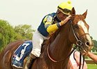 Gouldings Green will challenge a field of 10 others in the Essex Handicap (gr. III) at Oaklawn Park Feb. 9.