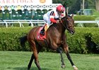 Grass Stars Likely to Emerge in Miss Grillo