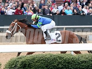 Absinthe Minded wins the 2012 Bayakoa Stakes.