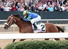 Absinthe Minded won the Bayakoa Stakes by four lengths on Feb. 18.