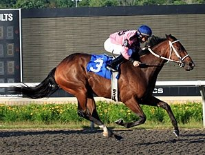 Hollywood Hit Ready for Kennedy Road