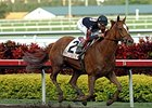 Ginger Punch Romps in Distaff