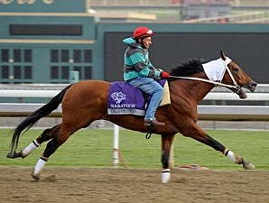 Calidoscopio - Breeders' Cup 2012