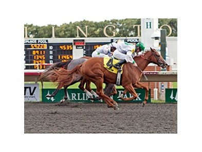 Gold Edge wears down pacesetter La Song to win the Arlington-Washington Lassie.