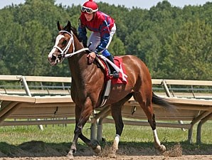 Ann's Smart Dancer wins the 2011 Power By Far Stakes.