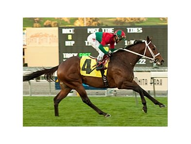 "Jeranimo is two-for-two on the turf.<br><a target=""blank"" href=""http://www.bloodhorse.com/horse-racing/photo-store?ref=http%3A%2F%2Fpictopia.com%2Fperl%2Fgal%3Fprovider_id%3D368%26ptp_photo_id%3D9346074%26ref%3Dstory"">Order This Photo</a>"