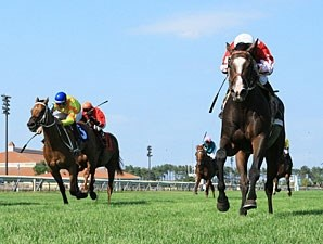 Wild Jacob wins the 2012 John Bullit Stakes.