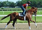 Dullahan works at Belmont Park 6/1/2012