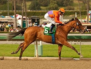 Champ Beholder Back in Form for 'Virgenes Win
