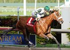 Mucho Macho Man Seeking Triumphant Return