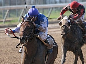 Best of Birdstone wins the 2012 Razorback Futurity.