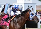 "It's Alternation in the Pimlico Special.<br><a target=""blank"" href=""http://photos.bloodhorse.com/AtTheRaces-1/at-the-races-2012/22274956_jFd5jM#!i=1854397300&k=srWPjQM"">Order This Photo</a>"