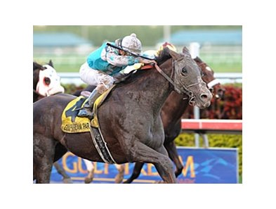 "Giant Oak faces 6 in the New Orleans Handicap.<br><a target=""blank"" href=""http://www.bloodhorse.com/horse-racing/photo-store?ref=http%3A%2F%2Fpictopia.com%2Fperl%2Fgal%3Fprovider_id%3D368%26ptp_photo_id%3D9395117%26ref%3Dstory"">Order This Photo</a>"