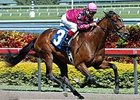 Hey Byrn was an easy winner of an entry level allowance race March 2 at Gulfstream Park.