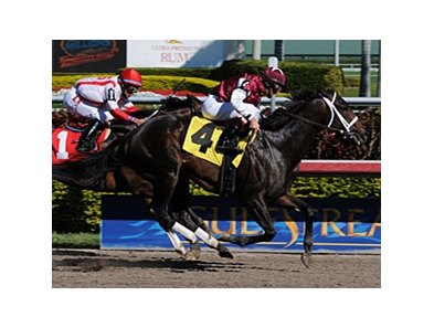 Crossbow makes his stakes debut in the Hutcheson.