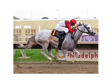 Careless Jewel cruises home in the Fitz Dixon Cotillion.