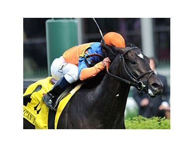 "Noble Tune faces 8 in the Solar Splendor Stakes.<br><a target=""blank"" href=""http://photos.bloodhorse.com/AtTheRaces-1/at-the-races-2013/27257665_QgCqdh#!i=2491530655&k=fMPDP4r"">Order This Photo</a>"
