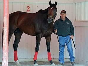 Fort Larned, Successful Dan Drill at Saratoga