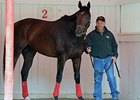 "Fort Larned<br><a target=""blank"" href=""http://photos.bloodhorse.com/AtTheRaces-1/at-the-races-2013/27257665_QgCqdh#!i=2658858399&k=s6Wx8RV"">Order This Photo</a>"